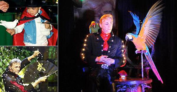 La Féérie Magique Des Oiseaux - Spectacle de Noël